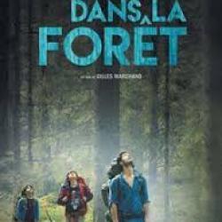 Dans la forêt - Gilles Marchand